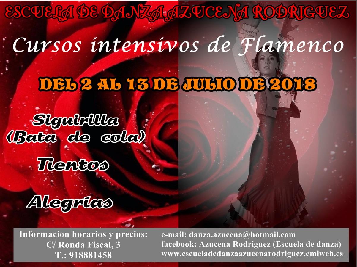 Cartel cursillos flamenco